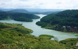 Erstaunliche Landschaft von See vom Berg mit Kiefernwald lizenzfreie stockfotos