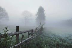 Erstaunliche nebelige Landschaft Lizenzfreie Stockfotografie