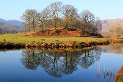 Erstaunliche Reflexion von Bäumen in einem ruhigen See Stockfotografie