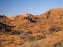 Erstaunliche trockene Landschaft Stockbild