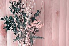 Erstaunlicher Blumenstrauß der Pussyweide und mimizy im Vase auf einem hölzernen Hintergrund Erblassen Sie - rosa Ton Stockfoto