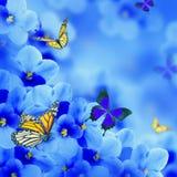 Erstaunlicher Blumenstrauß von Frühlingsveilchen Stockfoto
