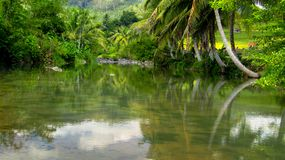 Erstaunlicher Fluss in Tasikmalaya Lizenzfreie Stockbilder