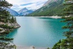 Erstaunlicher grüner See umgeben durch Berge Alberta Canada Stockfotos