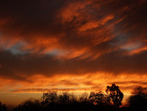 Erstaunlicher roter Himmel Lizenzfreie Stockbilder