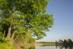 Erstaunlicher Sommerfluß Dnieper Dnipro lizenzfreies stockbild