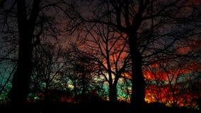 Erstaunlicher Sonnenaufgang Stockfoto