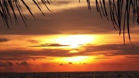 Erstaunlicher Sonnenuntergang am tropischen Strand stock video