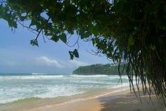 Erstaunlicher Strand auf dem Indischen Ozean Lizenzfreie Stockbilder