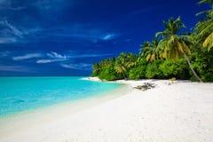 Erstaunlicher Strand auf einer Tropeninsel mit Palmen über dem lago Lizenzfreie Stockfotos