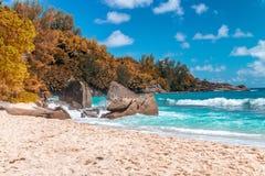 Erstaunlicher Strand und Vegetation in Seychellen Autumn Colors Lizenzfreie Stockbilder