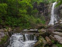 Erstaunlicher Wasserfall in der tiefen Waldlandschaft Lizenzfreie Stockfotos