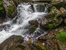 Erstaunlicher Wasserfall in der tiefen Waldlandschaft lizenzfreies stockbild