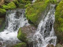 Erstaunlicher Wasserfall in der tiefen Waldlandschaft Lizenzfreie Stockfotografie