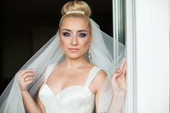 Erstaunliches Eleganz nettes stilysh blonde Braut wirft auf dem BAC auf Stockfoto