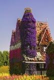 Erstaunliches Haus des Hintergrundes mit Fenstern von bunten Blumenpetunien im Dubai-Wunder-Garten Stockbilder