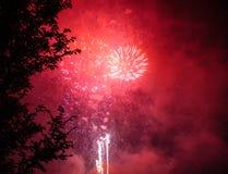 Erstaunliches Kirschrotfeuerwerk Stockfotografie