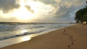 Erstaunliches Sonnenunterganglicht auf dem Sri Lanka-Strand Abdruck auf dem Sand stock footage