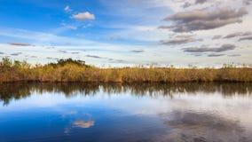 Erstaunliches Sumpfgebiet-Panorama Stockbilder