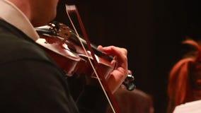 Erste Geige führt Teil der klassischen Musik, männliches spielendes Konzert durch stock video footage