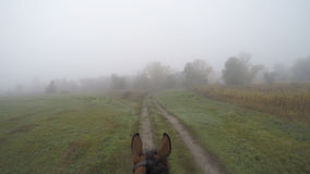 Erste Personenansicht des Reitens eines Pferds Gesichtspunkt des Reiters gehend am Hengst an der Natur Pov-Bewegung Abschluss obe Lizenzfreie Stockfotos