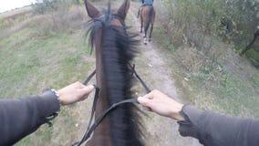 Erste Personenansicht des Reitens eines Pferds Gesichtspunkt des Reiters gehend am Hengst an der Natur Pov-Bewegung Abschluss obe Stockfoto