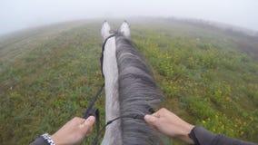 Erste Personenansicht des Reitens eines Pferds Gesichtspunkt des Reiters gehend am Hengst an der Natur Pov-Bewegung Abschluss obe Stockfotos