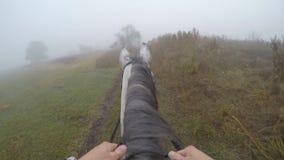 Erste Personenansicht des Reitens eines Pferds Gesichtspunkt des Reiters gehend am Hengst an der Natur Pov-Bewegung Abschluss obe Lizenzfreie Stockfotografie
