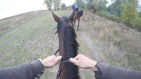 Erste Personenansicht des Reitens eines Pferds Gesichtspunkt des Reiters gehend am Hengst an der Natur Pov-Bewegung Abschluss obe Stockbild