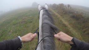 Erste Personenansicht des Reitens eines Pferds Gesichtspunkt des Reiters gehend am Hengst an der Natur Pov-Bewegung Abschluss obe Stockbilder