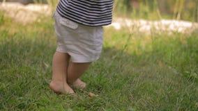 Erste Schritte des Babys auf Gras stock video