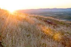 Erste Sonne strahlt warmes Licht der Farbe auf Ackerland aus Stockfotografie