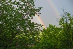 Erster Frühlingsregenbogen, Frühlingshintergrund Stockbild
