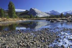 Erster Frost an den Tuolumne Wiesen in Yosemite Lizenzfreies Stockbild