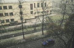 Erster Schnee Lizenzfreie Stockfotografie