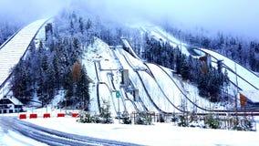 Erster Schnee lizenzfreie stockfotos