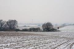 Erster Schnee auf dem Maisfeld Stockbilder