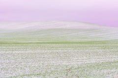 Erster Schnee auf Erntefeldern im Tageslicht lizenzfreie stockbilder