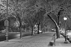 Erster Schnee auf Ostallee Stockfotografie