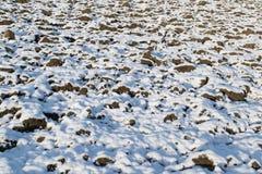 Erster Schnee des Jahres auf einem Gebiet Stockfoto