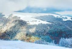 Erster Winterschnee im Berg Lizenzfreie Stockfotos