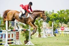 Erstes Cup Equestrian Show Jumping Stockbilder