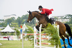Erstes Cup Equestrian Show Jumping Stockfoto