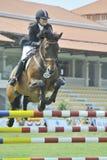 Erstes Cup Equestrian Show Jumping Lizenzfreie Stockfotografie