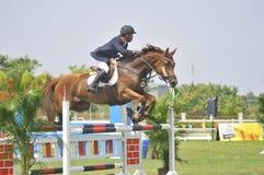 Erstes Cup Equestrian Show Jumping Lizenzfreie Stockbilder