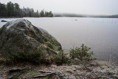 Erstes Eis und Frost Stockfoto