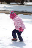Erstes snow3 Stockfotografie