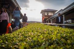Erstklassige Ausgänge Gotemba in Gotemba, Shizuoka, Japan lizenzfreie stockfotografie