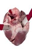 Erstochenes Herz stockbilder