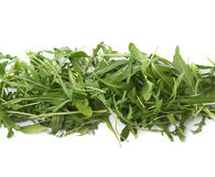 Eruca sativa rucola rocket salad Royalty Free Stock Photos